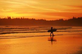 surfer tofino